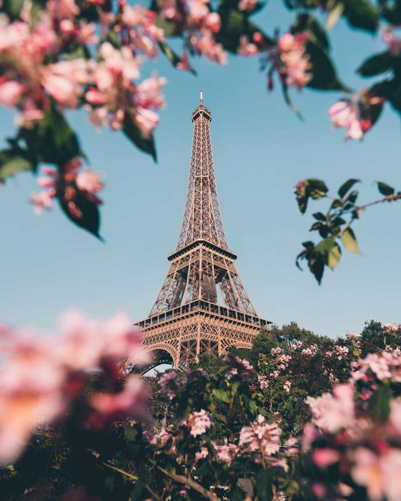 Eiffel Tower With Beautiful Spring Flowers In Paris